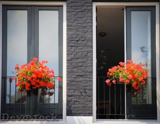 Devostock Flowers Door Entrance 130504 4K