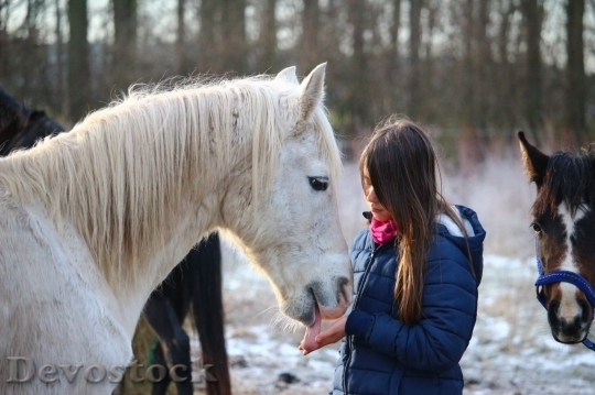 Devostock Friendship Snow Horse Girl Love