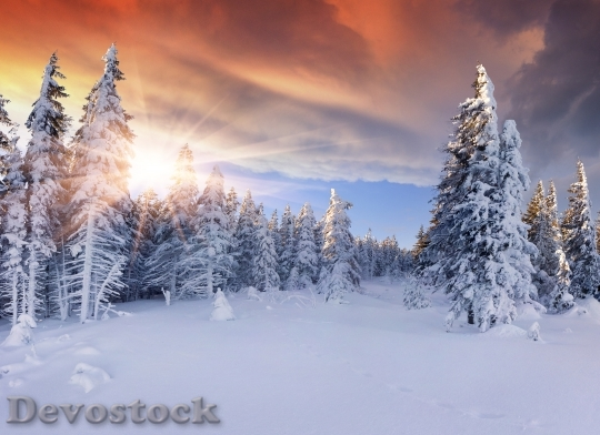 Devostock Beautiful winter sunrise in the mountains. Dramatic red  sky