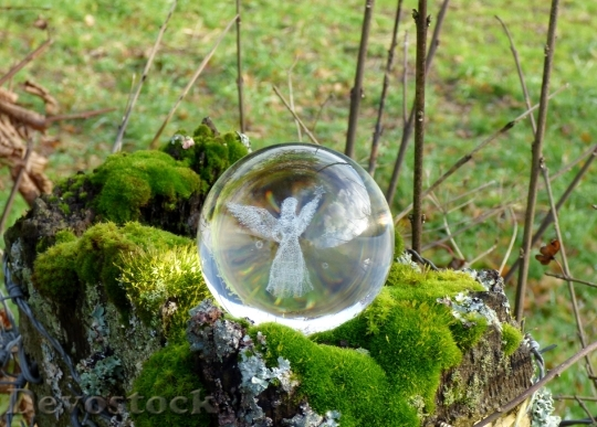 Devostock Angel Glass Object Decortion 4K