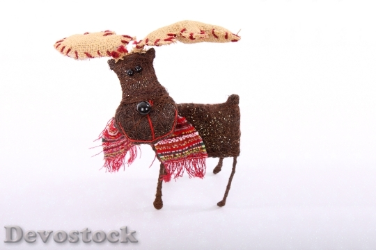 Devostock Animal Celebration Christmas Cte 1 4K