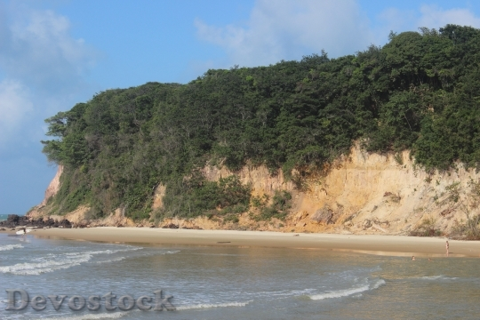 Devostock Beach Christmas Brazil 118932 4K