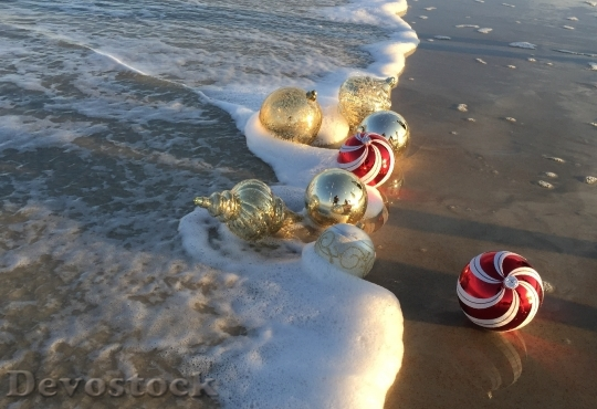 Devostock Beach Christmas Ornaments Hoiday 4K