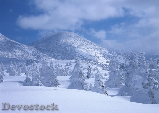 Devostock Beautiful Winter Landscape Wth 4 4K