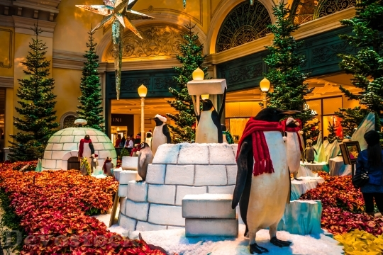 Devostock Bellagio Hotel Christma Las 4K
