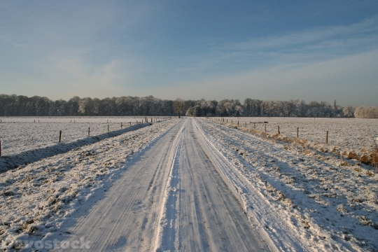Devostock Frozen Road Winter Wnter 4K