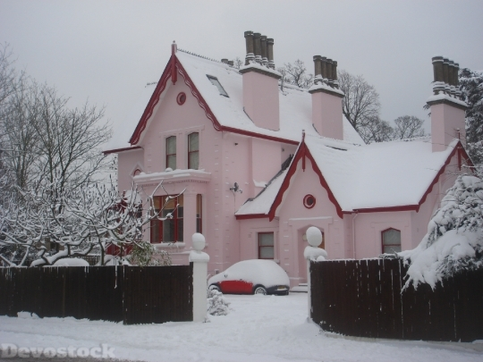 Devostock House Snow Pink Lndon 4K