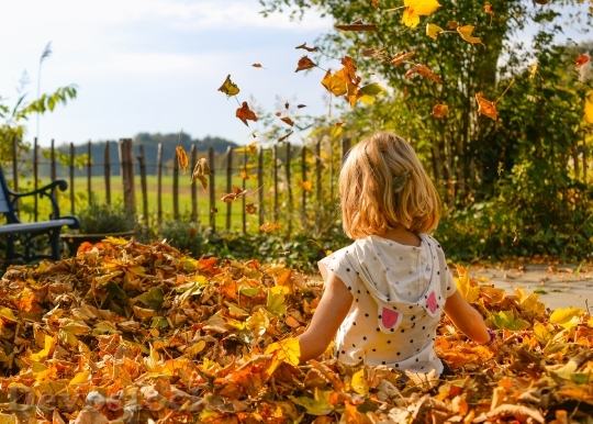 Devostock Little Girl Autumn Leaves 4K