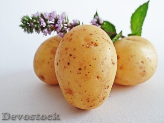 Devostock Potatoes Vegetables Field Eat 5157 4K.jpeg