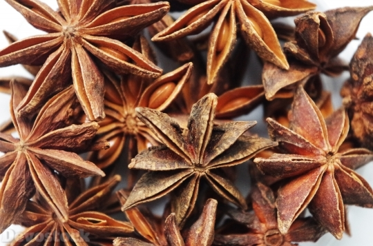 Devostock Star Anise Pepper Fragrnt 1 4K