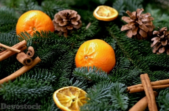 Devostock Tangerines Fruit Frisch Chritmas 4K