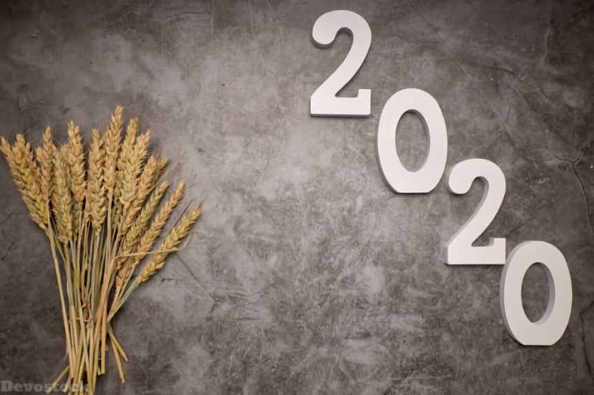 2020 New Year Design HD  (144)