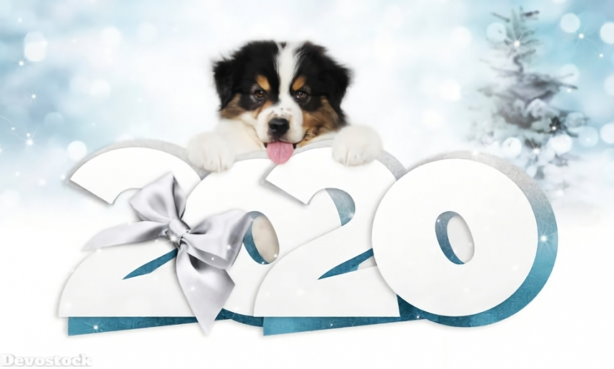 2020 New Year Design HD  (42)
