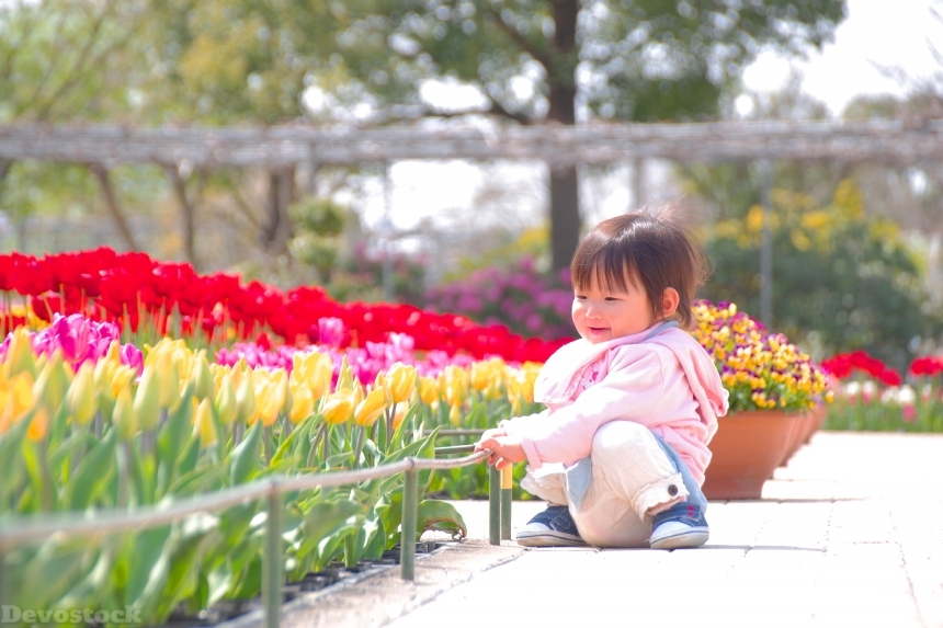 Devostock Baby Sitting Outdoor Colorful Flowers Roses Spring 4k