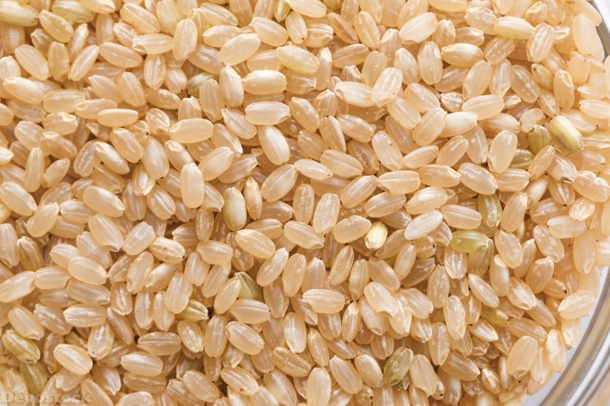Devostock Food Cup Healthy Brown Rice Economy Sustainability 4k
