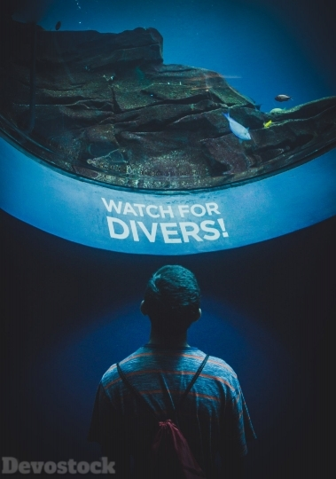 Devostock Lights Man Water Diver Watch Fish 4K.jpeg