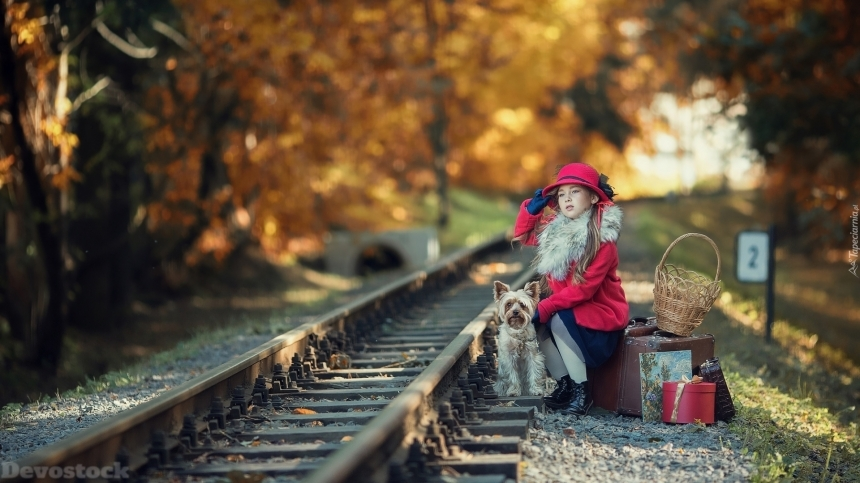 Devostock Little Girl Dog Nature Train Travel Waiting Autumn 4k