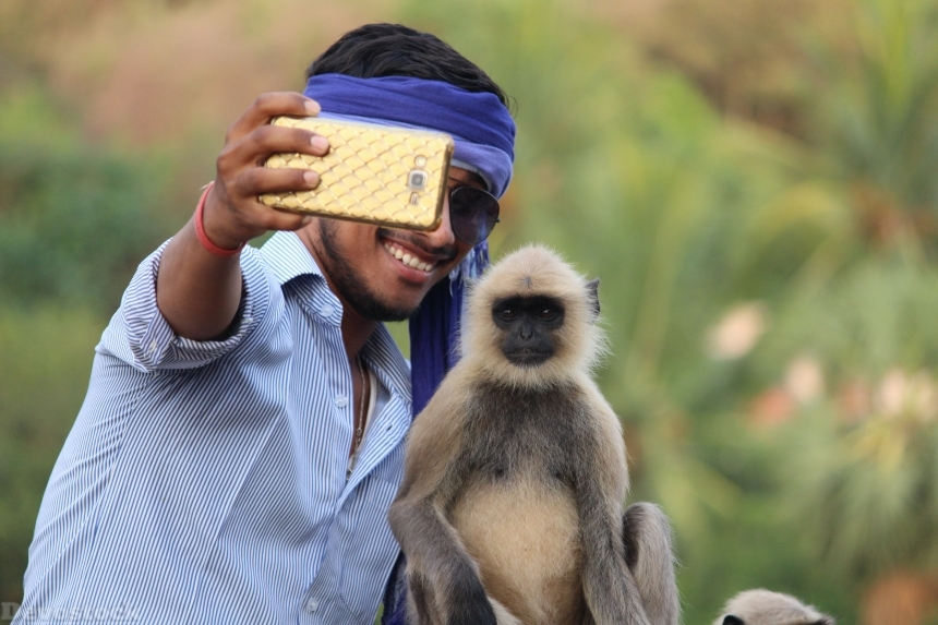 Devostock Man Taking Photos Selfe Monkey 4k