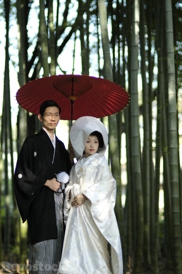 Devostock Marriage Tradition Japan Couples Bamboo Bride Groom 4k