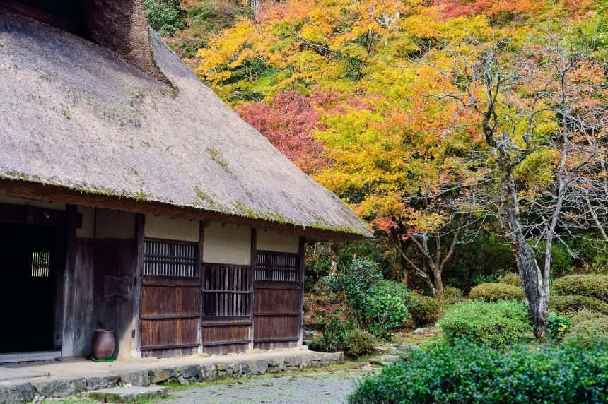 Devostock Nature Old House Green Autumn 4k