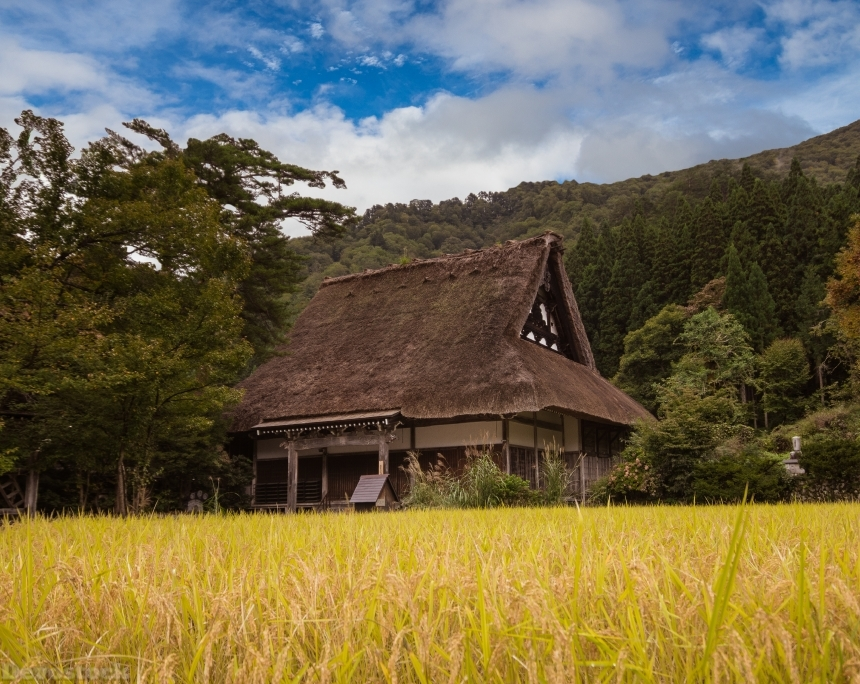 Devostock Nature Old Private House Clear Sky Rice Field 4k