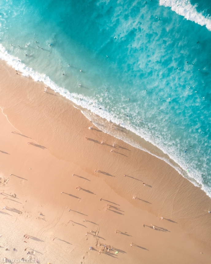 Devostock Outdoor Nature Aerial Photography Aerial Shot Beach 4k