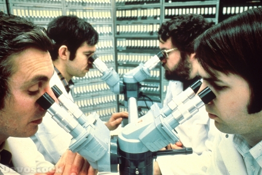 Devostock Pathologists Looking Into Microscopes 4k