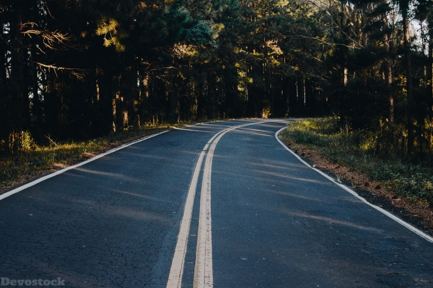 Devostock Road Wallpaper Asphalt Black Top Trees 4k