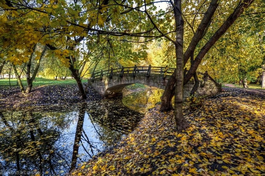 Devostock Russia St. Petersburg Parks Rivers Bridges Autumn 4K