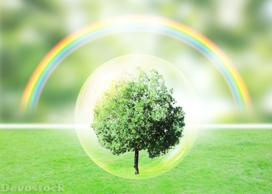 Devostock Stunning Nature Protectoion Design Rainbow Care 4k
