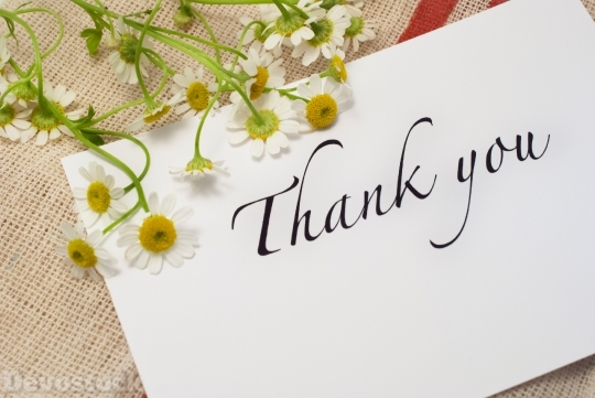 Devostock Thank You Card Gift Flowers 4k