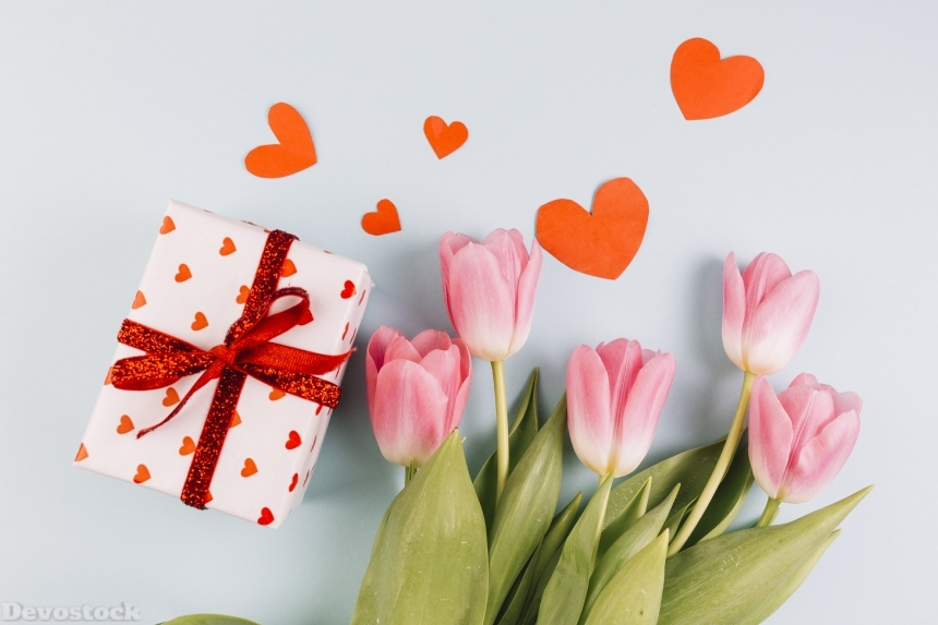 Devostock Valentine Day Tulips Gifts Heart 4K
