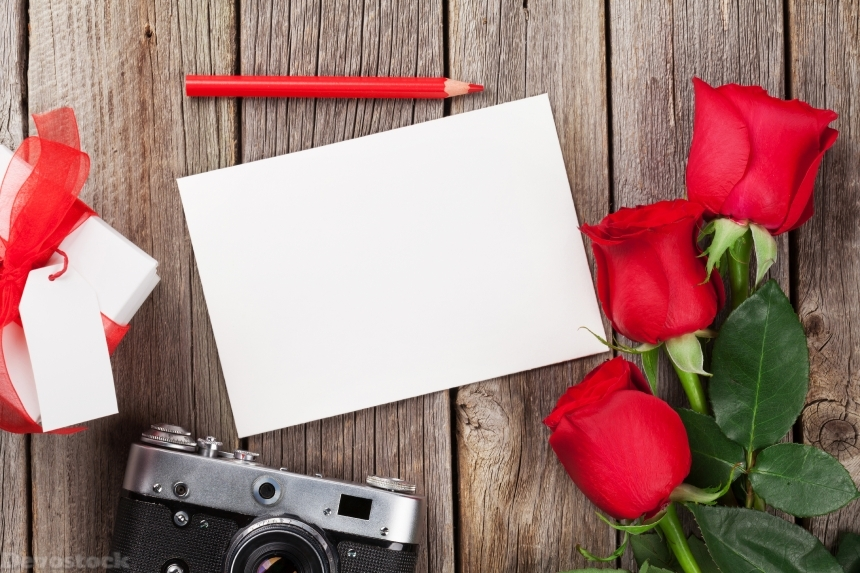 Devostock Valentines day roses, photo frame and camera