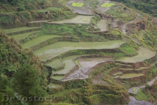 Devostock banauericeterraces-dsc01051