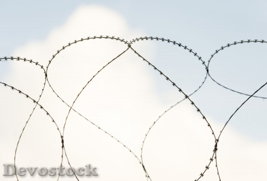 Devostock Barbed wire with heart shape