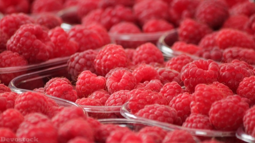 Delicious red sweet raspberry (4)