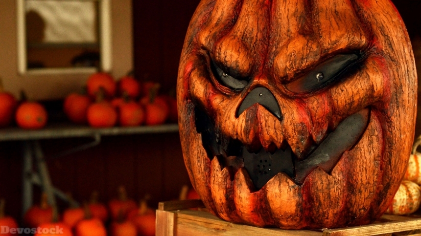 Devostock Halloween Celebration pumpkin stock images collection