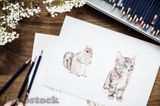 Devostock Illustrationist coloring adorable animals workspace concept