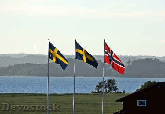 Devostock Sweden flag  (15)
