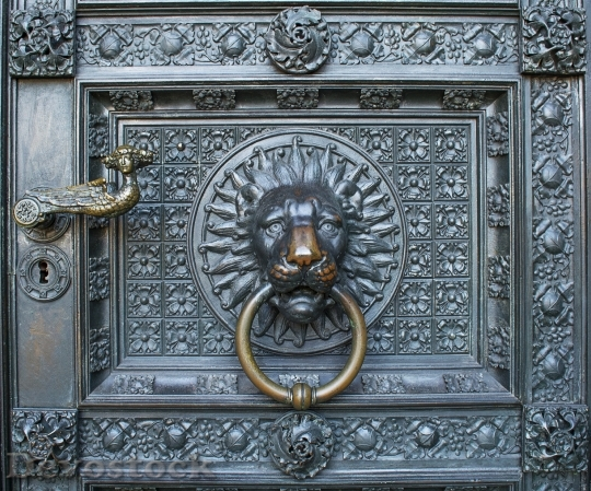 Devostock Lion Cologne Cathedral Entrance