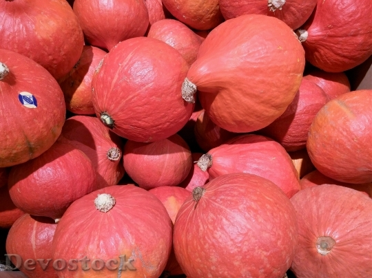 Devostock Pumpkin Autumn Decorative Squashes 1