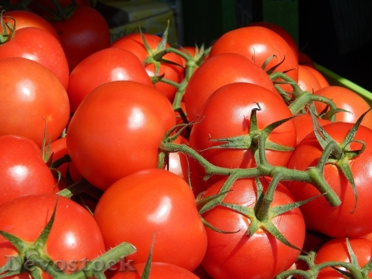 Devostock Tomatoes Vegetables Tomato Green
