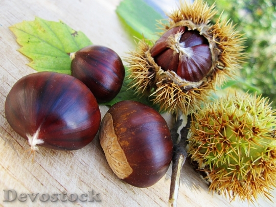 Devostock Chestnuts Nut Food Natural
