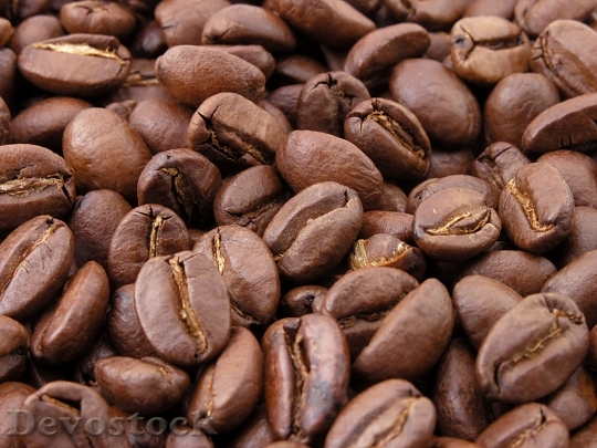 Devostock Roasted Coffee Beans