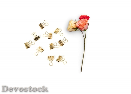 Devostock Romantic Flowers Paper Clips 9026